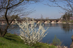 Lodi - Bridge on Adda River - Lombardy Stock Photography