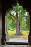 Lodi gardens, Delhi, India. Bara Gumbad temple. Lodi gardens, Delhi, India Royalty Free Stock Photo