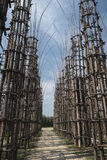 Lodi Lombardy, Italy: the vegetal cathedral Stock Photography