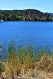 Lodjur sjö, Bradshaw kommandosoldatområde, Prescott National Forest, tillstånd av Arizona, Förenta staterna Arkivbild