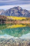 Lodlinje av aspar reflekterade i Rocky Mountains Arkivbild