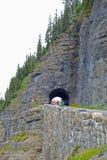 Lodlinje-berg och tunneler i glaciärnationalpark Royaltyfri Bild