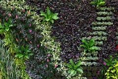 Lodlinje som arbeta i trädgården i parkera Arkivfoto
