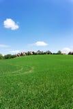 Lodlinjeskott av röda takhus på en grön kulle Royaltyfria Foton