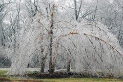 lodowa burza Zdjęcia Royalty Free