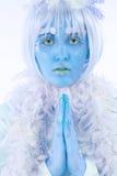 lodowa księżniczka Zdjęcia Royalty Free