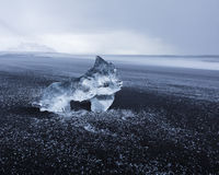 Lodowa lisiątko rzeźba przy czarną powulkaniczną Iceland plażą Zdjęcia Royalty Free