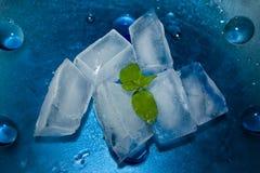 lodowa mennica Obrazy Royalty Free