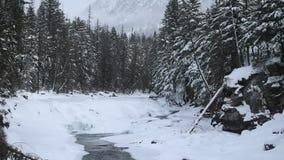 Lodowa park narodowy Snowing w zimie zdjęcie wideo
