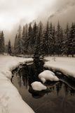 lodowata creek Obrazy Stock