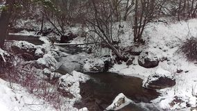 Lodowata rzeka Przez Zamarzniętego krajobrazu zdjęcie wideo