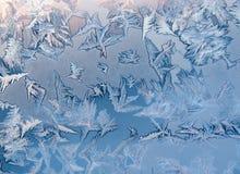 lodowata wzór zima Zdjęcie Royalty Free