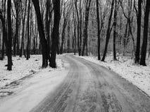 Lodowatej zimy lasowa droga zdjęcia royalty free