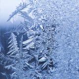 Lodowaty mróz na zima ranku Zdjęcia Royalty Free