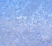 Lodowaty mróz na zima ranku Obrazy Royalty Free
