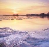 lodowaty poranek Zdjęcia Stock