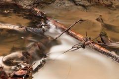 Lodowaty strumień przez lasu zdjęcia royalty free