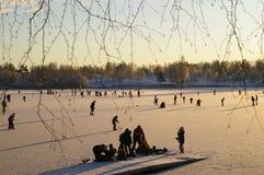 lodowe zawodnika Fotografia Royalty Free