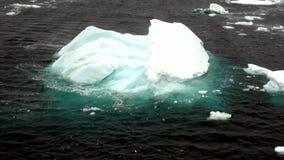 Lodowego floe widok od statku w oceanie Antarctica zdjęcie wideo