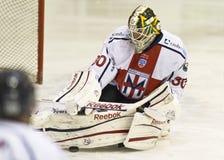 Lodowego hokeja bramkarz zdjęcie stock