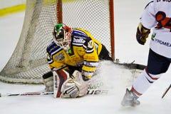 Lodowego hokeja bramkarz Zdjęcie Royalty Free