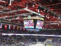 Lodowego hokeja Światowy mistrzostwo Minsk 2014 Fotografia Royalty Free