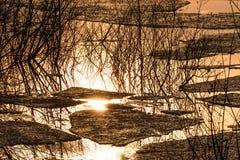 Lodowi dryf wody odbicia jeziorni Obrazy Royalty Free