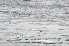 Lodowi floes na rzece Obraz Royalty Free