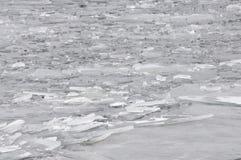 Lodowi floes na rzece Fotografia Royalty Free