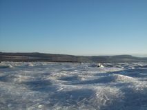 Lodowi kryształy zamarznięty szkocki kędziorek w zimy świetle słonecznym zdjęcia stock