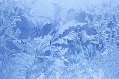 lodowi wzory Obraz Stock