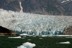 lodowiec Fotografia Royalty Free