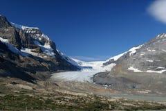 lodowiec athabasca fotografia stock