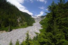lodowiec rzeki Zdjęcia Royalty Free