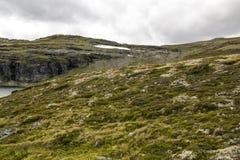 Lodowiec w obszarach trawiastych południowy Norwegia Zdjęcie Royalty Free
