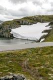 Lodowiec w obszarach trawiastych południowy Norwegia Zdjęcia Stock