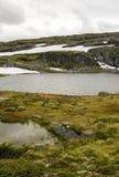 Lodowiec w obszarach trawiastych południowy Norwegia Obrazy Royalty Free