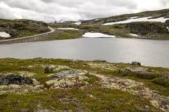 Lodowiec w obszarach trawiastych południowy Norwegia Fotografia Stock