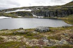 Lodowiec w obszarach trawiastych południowy Norwegia Obraz Stock