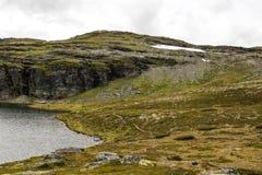 Lodowiec w obszarach trawiastych południowy Norwegia Zdjęcie Stock