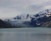 Lodowiec zatoki prezerwy i parka narodowego lodowowie Obrazy Stock