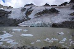 lodowowie Obrazy Stock