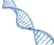 Lodowy DNA ilustracja wektor
