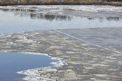 Lodowy dryf na rzece wielcy lodowi floes unosi się na wodzie S Zdjęcia Royalty Free