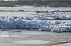 Lodowy dryf na rzece wielki lodowych floes pławik zdjęcia royalty free