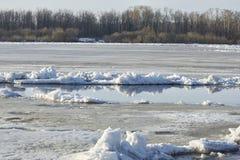 Lodowy dryf na rzece wielki lodowych floes pławik obrazy royalty free