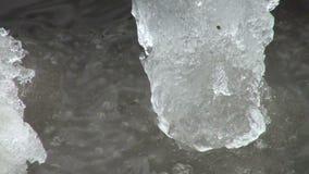 Lodowy floe unosi się w wodzie zbiory wideo