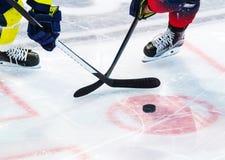 Lodowy gracz w hokeja na lodzie Fotografia Royalty Free
