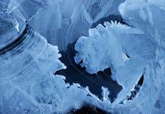 Lodowy i śnieżny świat zdjęcia stock