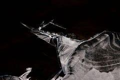 Lodowy i śnieżny świat zdjęcie stock